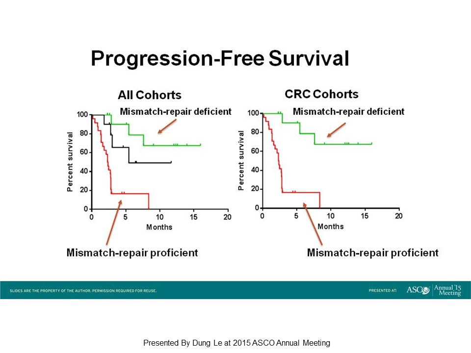 The Faces of Successful Colorectal Cancer Immunotherapies